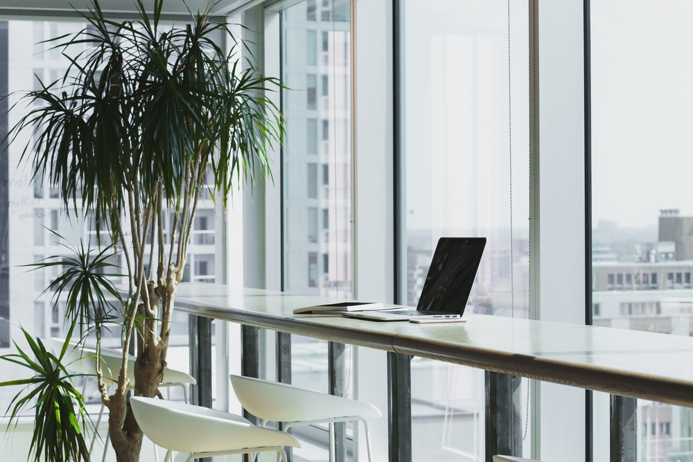 Picture of a desk next to broad windows in an office with plenty of natural light