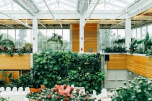 Biophilic office space with plant features on walls